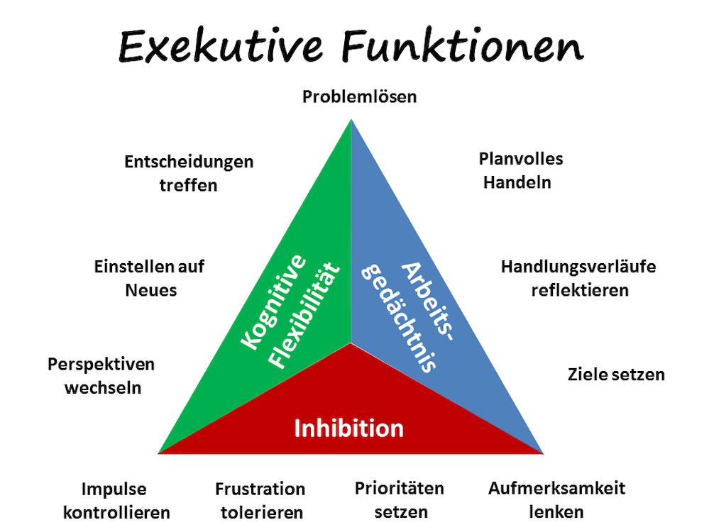 exekutivefunktionen